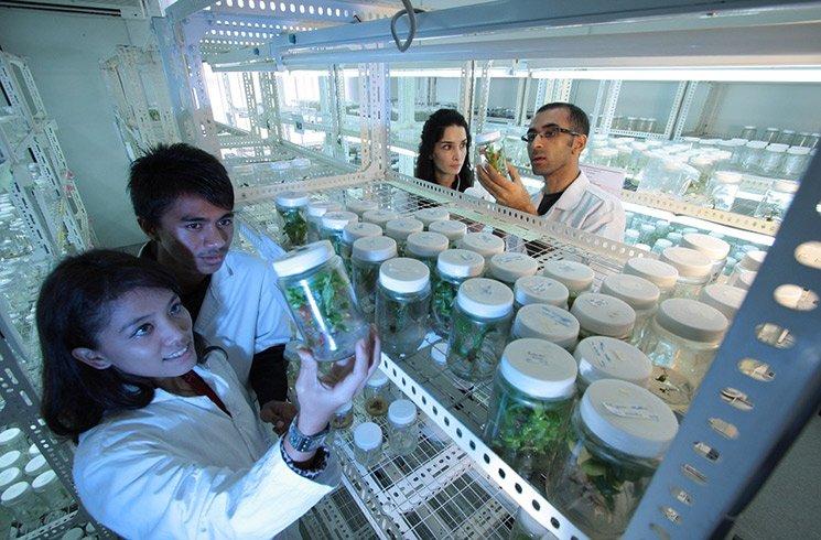 L'aromathérapie passionne aussi les scientifiques ! Pour preuve, ces nombreuses études publiées sur les molécules complexes qui composent les huiles essentielles.
